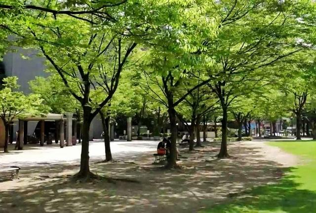理学療法士の専門学校・大学一覧【大分県(九州)】